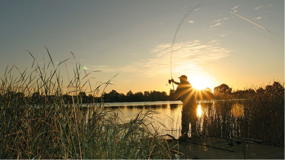 Choosing the Best Freshwater Fishing Spot
