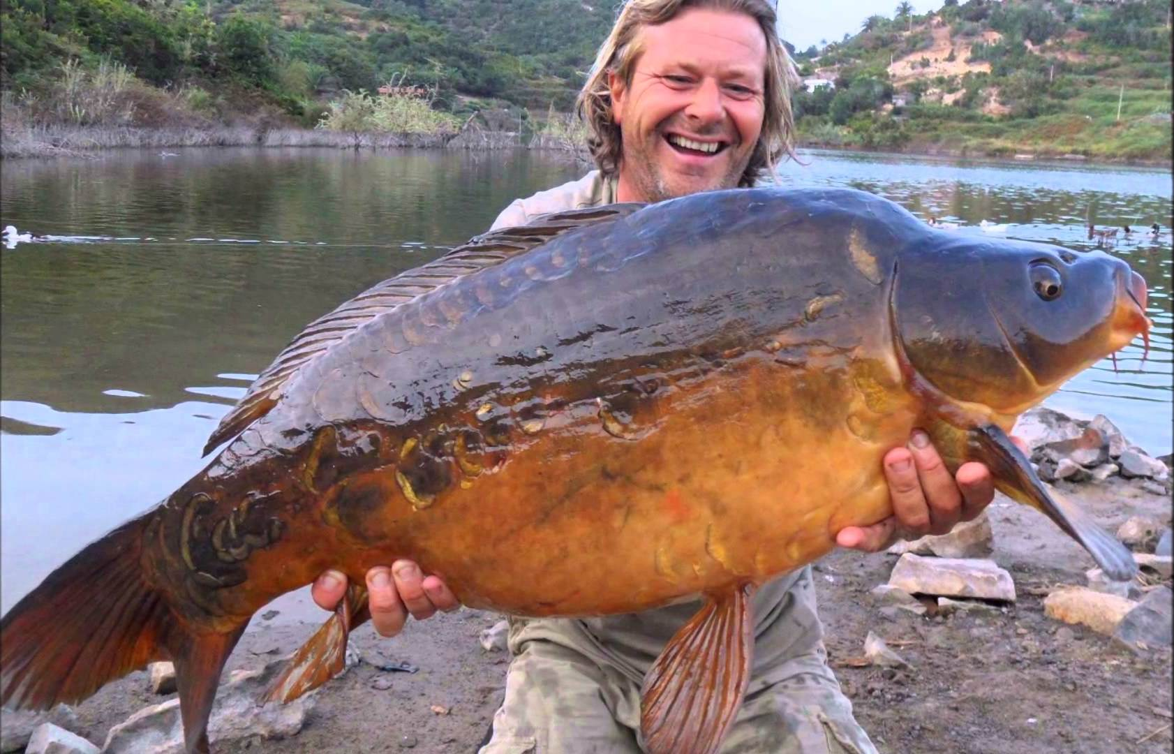 Carp Gran Canaria Fishing Tours – Carp Angling Paradise – Special Offer